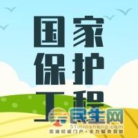 扁平插画芒种@凡科快图[kt.fkw.com].jpg